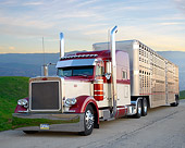 AUT 07 BK0025 01