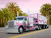 AUT 07 RK0209 01