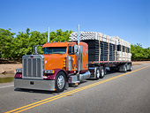 AUT 07 RK0342 01