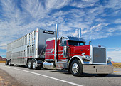 AUT 07 RK0403 01