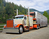 AUT 07 RK0479 01
