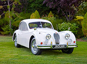 AUT 12 RK0365 01