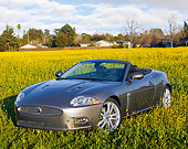 AUT 12 RK0294 01