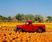AUT 14 RK0316 03