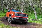 AUT 15 BK0050 01