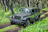 AUT 15 BK0052 01