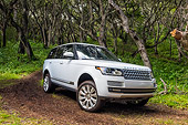 AUT 15 BK0060 01