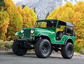 AUT 15 RK1365 01