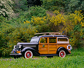 AUT 19 RK0329 03