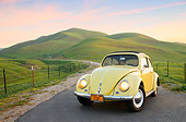 AUT 21 RK3409 01
