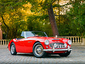 AUT 22 BK0013 01