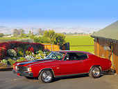 AUT 23 RK1179 01