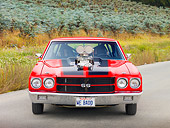 AUT 23 RK1895 01