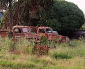 AUT 30 RK1460 01