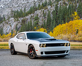 AUT 51 RK0081 01