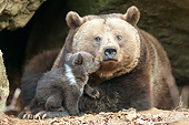 BEA 01 AC0018 01