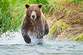 BEA 01 MC0016 01