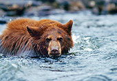 BEA 01 RK0039 01