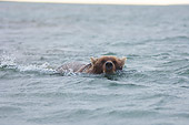 BEA 01 SK0002 01