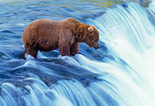 BEA 01 NE0006 01