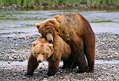BEA 01 NE0024 01