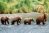 BEA 01 NE0025 01