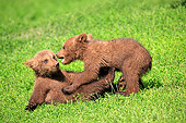 BEA 02 AC0005 01