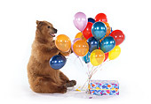 BEA 02 RK0034 24