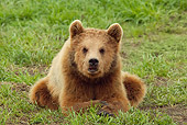 BEA 02 WF0001 01