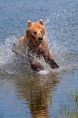 BEA 03 AC0002 01