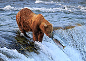 BEA 03 AC0003 01