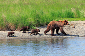 BEA 03 AC0006 01