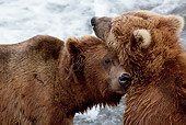 BEA 03 LS0002 01