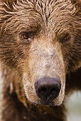 BEA 03 MC0018 01