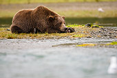 BEA 03 MC0022 01