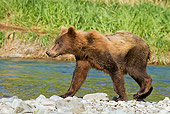 BEA 03 MC0047 01