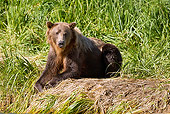 BEA 03 MC0054 01