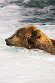 BEA 03 JM0002 01