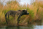 BEA 03 KH0013 01