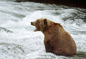 BEA 03 RF0040 01
