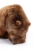 BEA 04 RK0026 06