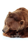 BEA 04 RK0027 09
