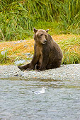 BEA 04 NE0019 01