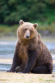 BEA 04 NE0020 01