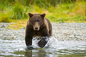 BEA 04 NE0021 01