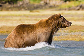 BEA 04 NE0025 01