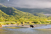 BEA 04 NE0030 01