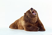 BEA 04 RK0023 01