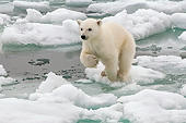 BEA 06 AC0003 01