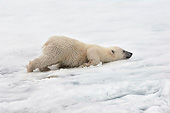BEA 06 AC0004 01